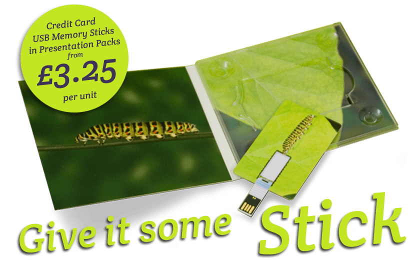 Printed USB Memory Stick Promo