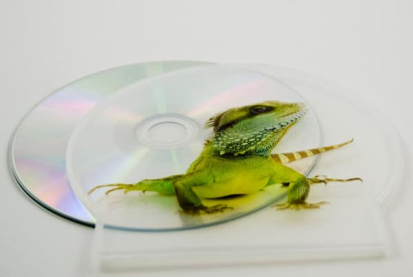 UV printing - CD C-Shell